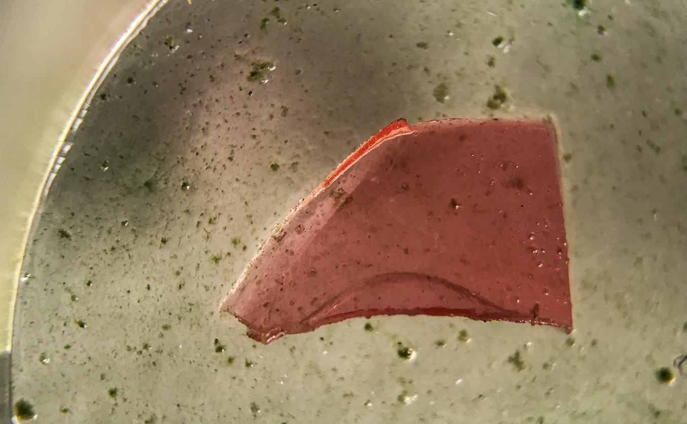 redplastic_sample_IMG_8718